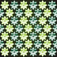 Muster Schädel Ornament vektor