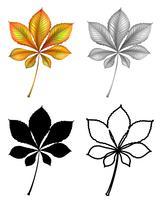 Satz von Pflanzenblatt