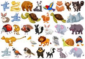 Reihe von verschiedenen Tieren