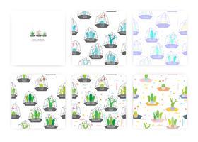 Sats av sömlösa mönster med kaktusar I glasterrarier. Bakgrunds illustrationer för presentförpackning.