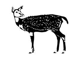 hjort silhuett i svart och vitt vektor