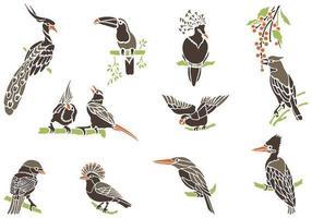 Exotiska fågelvektorer på grenar Pack