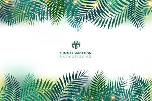 Sommartid semester och gröna palmblad med belysningseffekt på vit bakgrund.