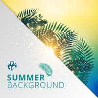 Sommer tropisch mit exotischen Palmblättern oder Pflanzen und Lichteffekt auf Weißbuchhintergrund.