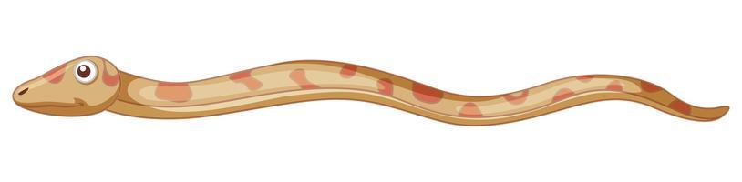Schlange auf weißem Hintergrund vektor