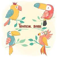 söt ritning platt vektor tropisk fågeluppsättning, färgrik sommar