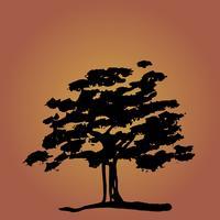 Baum vektor