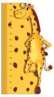 Höhenmessungsdiagramm mit Giraffe im Hintergrund vektor