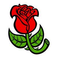 Schöne Rose Flower-Vektorillustration vektor