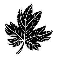Autumn Maple Leaf-Vektor-Logo vektor