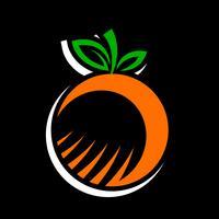 Orangenfrucht Illustration vektor