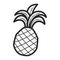 Ananas-Frucht vektor