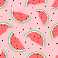 Wassermelonen-Sommer-Vektor-Hintergrund vektor