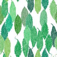 Nahtloser Hintergrund des grünen bitteren Kürbisses.