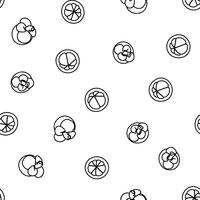 Mangosteen doodle handritad sömlös bakgrund.