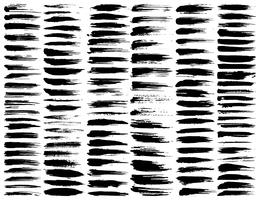 Set av penselsträngar, svarta bläckgrungeborstslag. Vektor illustration.