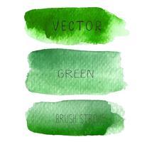 Ställ av gröna borstslag akvarell på vit baclground, Vektor illustration.