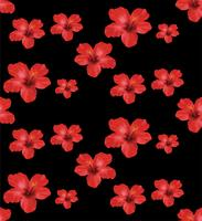 Röda Hibiskusblommor, blommigt sömlöst mönster. Vektor illustration på svart bakgrund.
