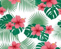 Nahtloses Muster von tropischem Blumen- und von Blättern auf weißem Hintergrund - Vector Illustration