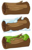 Melden Sie sich mit Schnee und Moos