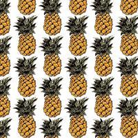 Ananas-Muster vektor