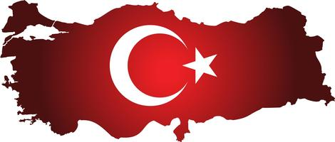 Turkiet karta med flagga. flagga kalkonland på digital bakgrund. Vektor.