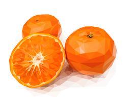 Orange, en av de kinesiska gynnsamma frukterna vektor
