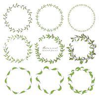 Satz des botanischen runden Rahmens, Hand gezeichnete Blumen, botanische Zusammensetzung, dekoratives Element für Einladungskarte, Vektorillustration. vektor