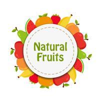 Naturlig frukt klistermärke vektor