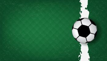 Fußball Hintergrund vektor