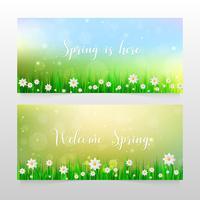 Vårbanners med gräs och vita blommor