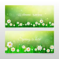 Frühlingsfahnen mit Gras und weißen Blumen