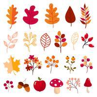 Herbst Elementsammlung