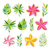 Tropische Sammlung mit exotischen Blumen und Blättern.