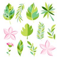 Tropisk samling med exotiska blommor och löv.
