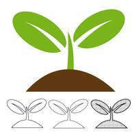Växtikon vektor