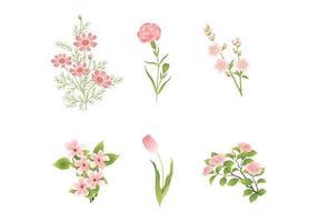 Verschiedene rosa Blumenvektoren