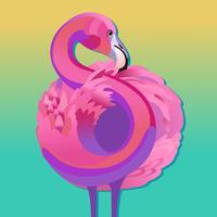 Rosa Flamingovektorillustration