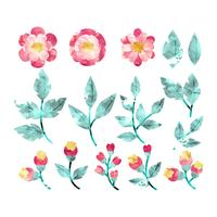Vektor akvarell blommor och grenar