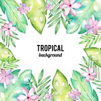 Akvarell tropisk bakgrund