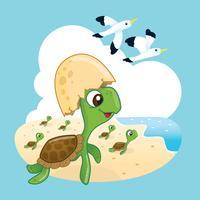Süße Meeresschildkröte vektor