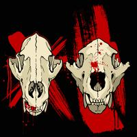 Grange Coyote Skulls vektor