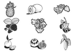 Handdragen frukt Vector Pack