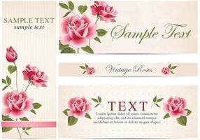 Vintage rose Banner Vektor Pack