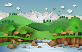 Hjortar i skogen vektor
