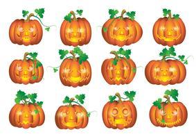 Set Kürbisse für Halloween vektor