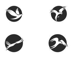 Vogel Logo Template-Vektor-Illustration