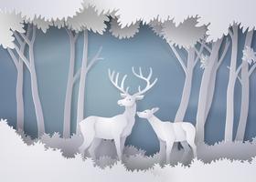hjortar i skogen.