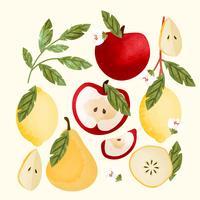 vektor handgjorda frukter