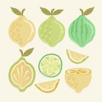 Vektor Hand gezeichnete Zitronen
